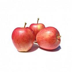 Foto Manzanas royal gala ecológicas (1 kg)