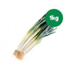 Foto Puerros ecológicos (1 kg)