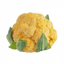 Foto Coliflor amarilla ecológica (1 unidad)