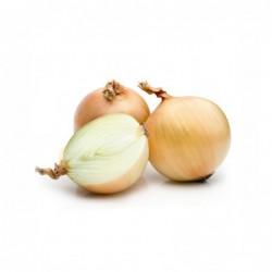 Foto Cebolla seca blanca ecológica (1 unidad)