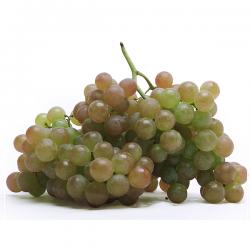 Uva Moscatel (500 g)