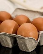 Comprar huevos ecológicos de proximidad
